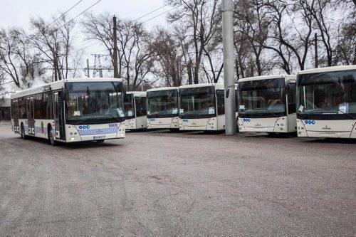 Автобусы Запорожья